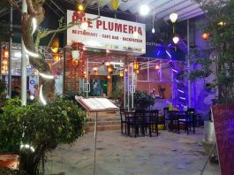 Hue Plumeria Hostel & Backpackers